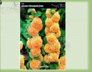 alcea-stockrose-orange-1-pc.jpg
